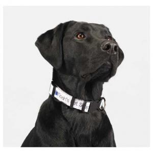 "Full Color Pet Collar - 1""W x 20""L"