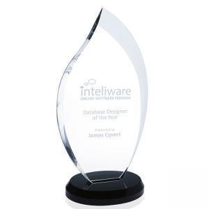 Innovation Award - Small