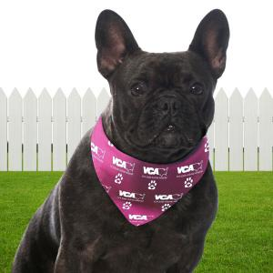 Full Color Large Dog Bandanna
