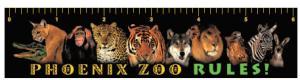 Full Color Zoo Theme Ruler Magnet