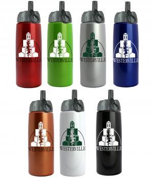 26 oz. Metallic Madrid Bottle