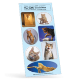 Cats Sticker Sheet Collection