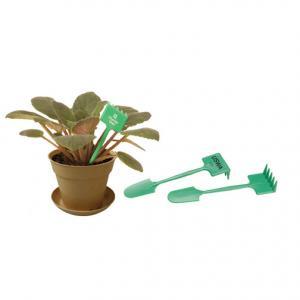 Plant Accessory Mini Rake and Shovel