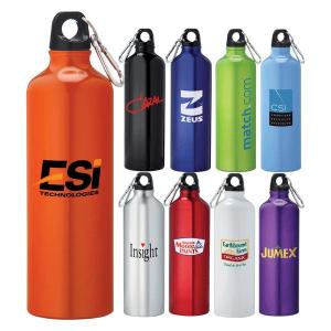 26 oz. Dolphin Aluminum Sports Bottle