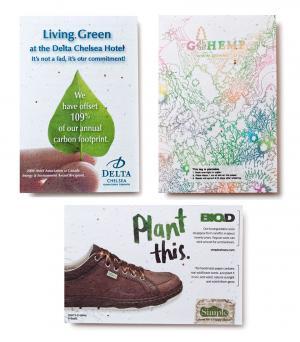 4 x 6 Medium Eco Friendly Seed Paper Postcard