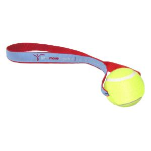 Woven Ribbon Tennis Ball Toss Toy