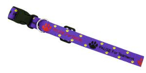 Economy Dog Collar, Small
