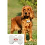 Talking Pet ID Tag