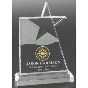 """Star Of The Year"" Award"