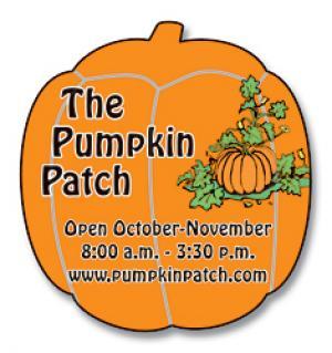 Pumpkin Shaped Magnet
