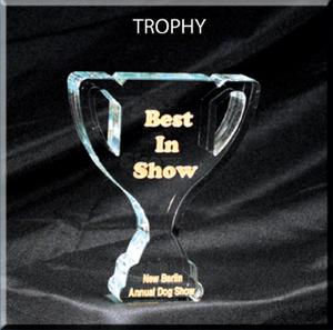 Trophy Shaped Acrylic Award/Paperweight