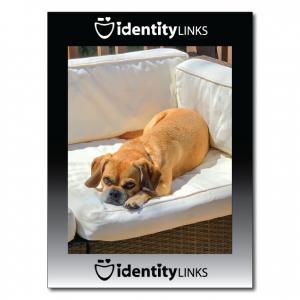 8 x 11 High Gloss Photo Frame