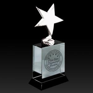 Star Shaped Crystal Paperweight Award